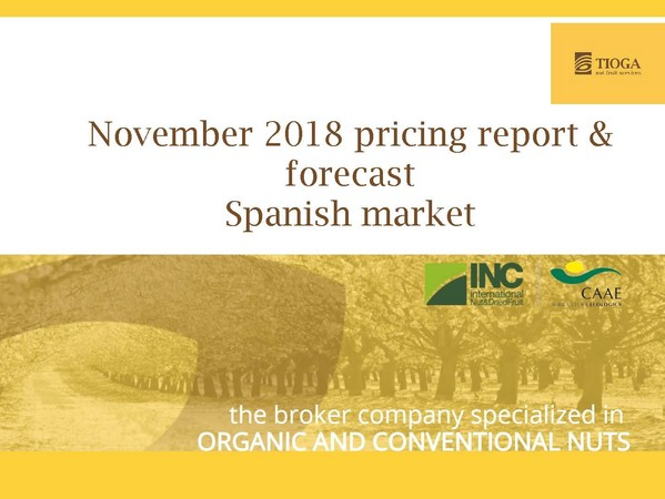 November 2018 Spanish market report