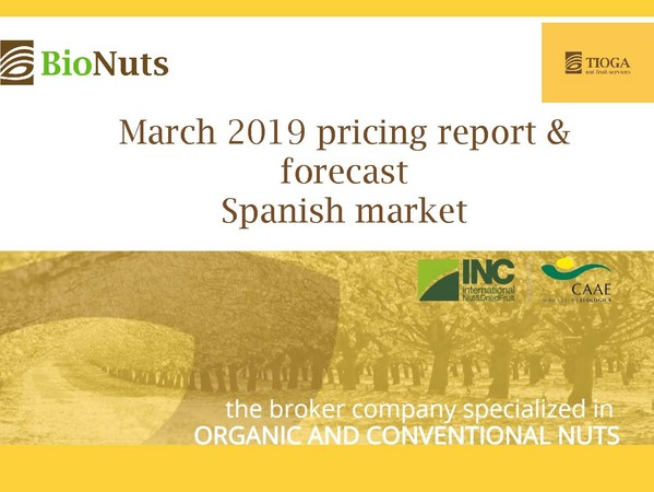 March 2019 Spanish market report