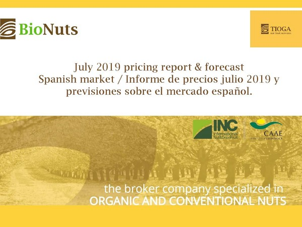 July 2019 Spanish market report