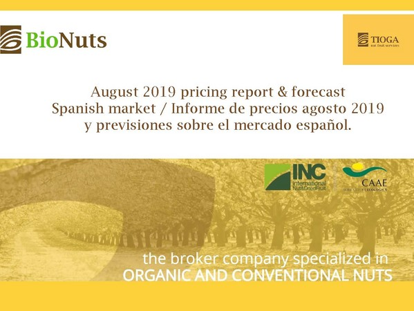August 2019 Spanish market report