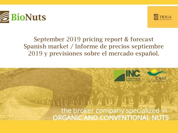 September 2019 Spanish market report